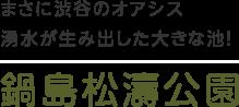 まさに渋谷のオアシス湧水が生み出した大きな池! 鍋島松濤公園