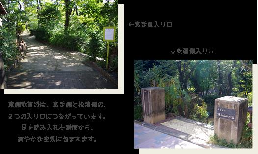 東側散策路は、裏手側と松濤側の、2つの入り口につながっています。足を踏み入れた瞬間から、爽やかな空気に包まれます。