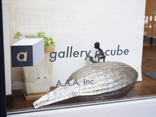 gallery a-cube+