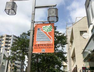 松涛文化村ストリートを映す